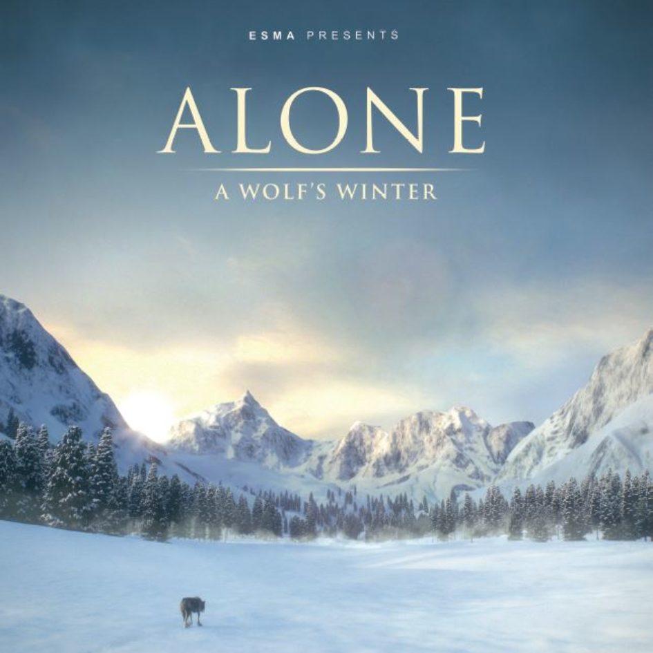 Affiche du film Alone a wolf's winter ESMA